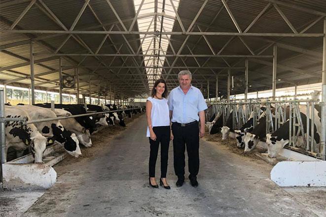 Лариса Білозір на молочній фермі в Попелюхах
